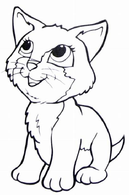 Coloring Cat Dogs Kitty Popular