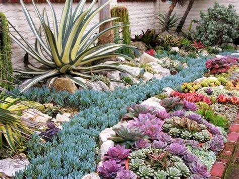Succulent Garden Ideas 2