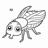 Fly Coloring Clip Vlieg Hoverfly Fluga Vector Mouche Illustrations Cartoon Ladybug Coloriage Livre Kleurend Boek Illustrationer Dessin Sequence Animal Housefly sketch template