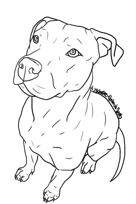 Related image | Templates | Pitbull drawing, Drawings, Pitbulls
