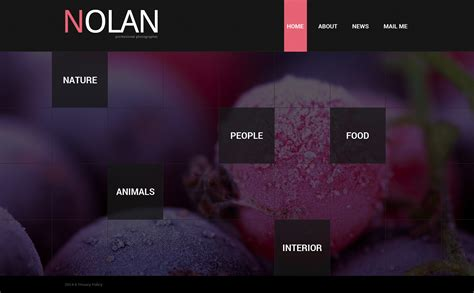 Portfolio Website Templates Photographer Portfolio Website Template 50493