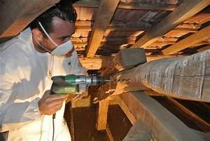 Traitement Bois Charpente : traitement des poutres en bois par injection ~ Edinachiropracticcenter.com Idées de Décoration