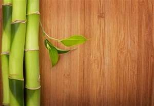 how to clean bamboo floors contractor quotes