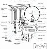 Toilet Bowl Drawing Master Getdrawings sketch template
