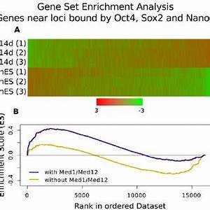 Model for ''gene regulatory hotspots''. ( A ) Enhancers ...