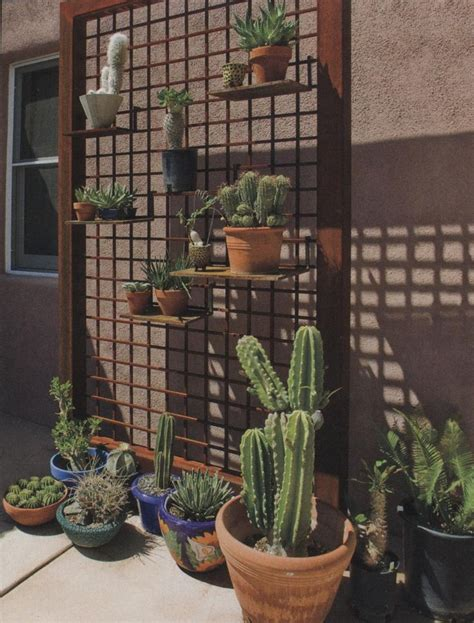 Best 25+ Metal Trellis Ideas On Pinterest  Metal Garden