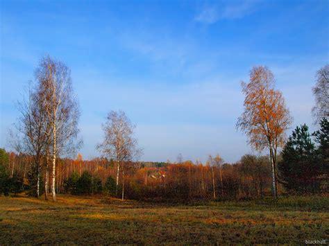 Rudens, mežs, krāsas - PhotoBlogSite