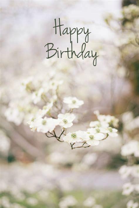 happy birthday flower images  pinterest