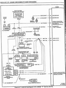 Holley Hp Efi Diagram