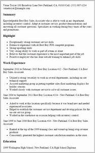 professional resume writers nyc resume resume examples With buy a professional resume