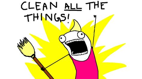 Clean All The Things Meme - interview allie brosh author of hyperbole and a half npr