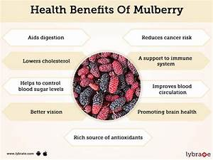 Mulberry Fruit Benefits And Its Side Effects