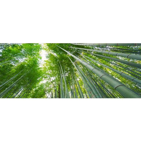 Brise vue imprimu00e9 du00e9co Bambous - Art Du00e9co Stickers