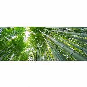 Bambou Brise Vue : brise vue en bambou amnagement balcon brise vue bambou ~ Premium-room.com Idées de Décoration