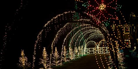 christmas light displays  los angeles moving