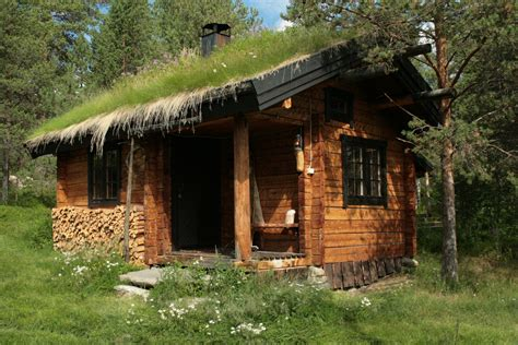 cabin in woods luxury anthropology the tangled woof of fact