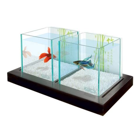aquarium pour betta combattant aquarium aqua bamboo betta duo
