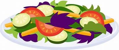 Salad Clip Clipart Cliparts Salads Plate Vegetables