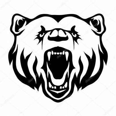 Bear Wild Mouth Grizzly Open Depositphotos Korniakovstock