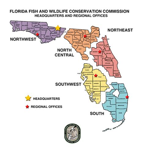 Pinellas County Florida Boat Registration by Fwc Applications Safety