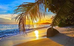 Bilder Am Strand : fotos von strand meer natur palmengew chse 1920x1200 ~ Watch28wear.com Haus und Dekorationen