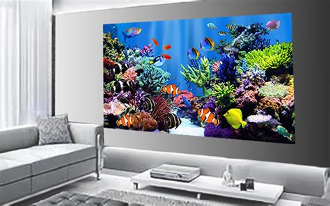 Wallpaper And Mural Printing Add Stylish Patterns Photos