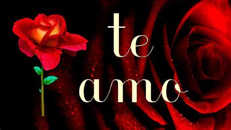 Frases De Amor Con Imagenes De Rosas Youtube