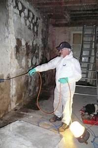 Produit Contre Les Termites : nos solutions de traitement contre les champignons sur bordeaux diagnostic et traitement de ~ Melissatoandfro.com Idées de Décoration