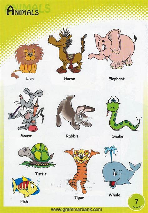 animals vocabulary  kids