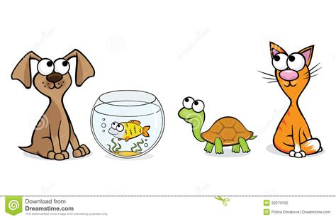 nice pets stock photography image
