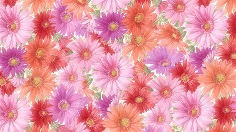 Flowers Wallpaper Tablet HD #4548 Wallpaper