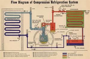 Refrigeration  Refrigerator Refrigeration System