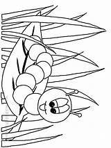 Worm Coloring Pages Printable Cartoon Books Last Library Clipart Popular Sketch sketch template