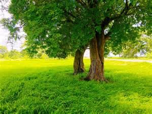 Sri Lanka Nature Photography