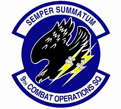 Squadron Operations 9th Combat Space Cos Patch