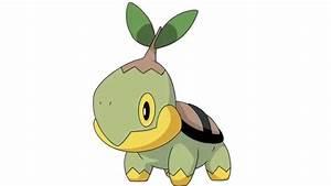 Pokemon Cries - Turtwig   Grotle   Torterra - YouTube