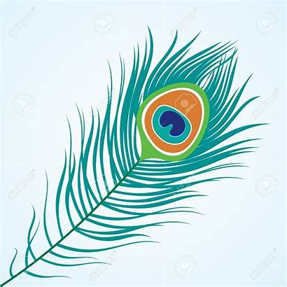 Peacock Clipart Feather Clip Feathers Clipground