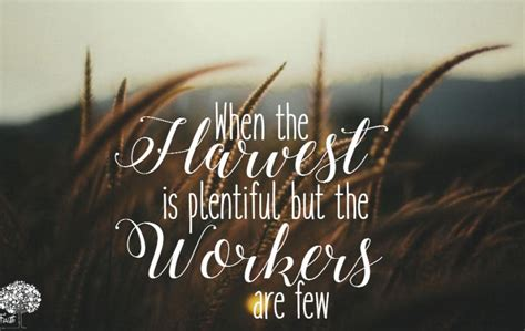 The Harvest is Plentiful, But the Workers are Few ...