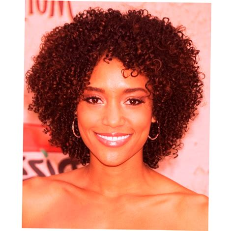 african american natural hairstyles new style for 2016