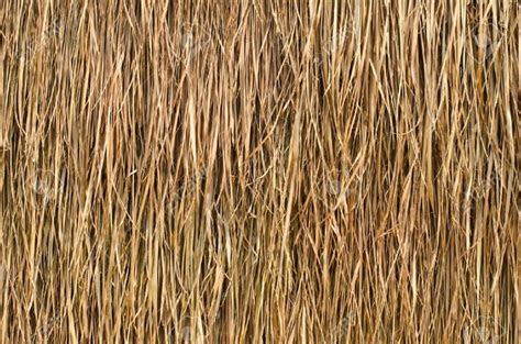 Grass Hut Roof by Thatch House Japan T 236 M Với Traditional
