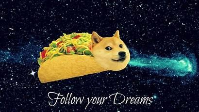 Doge Meme Wallpapers Dog Wallpaperplay