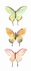Illustration art watercolor pastel butterfly transparent ...
