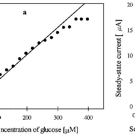 linear portions   enzyme electrode response   function   scientific diagram