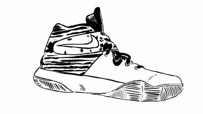 Kyrie Irving Nike Sneaker Shoe Heel Introduces