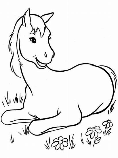 Coloring Horse Pages Horses Cartoon Printable Animals