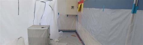 lead based paint mold  asbestos removal services
