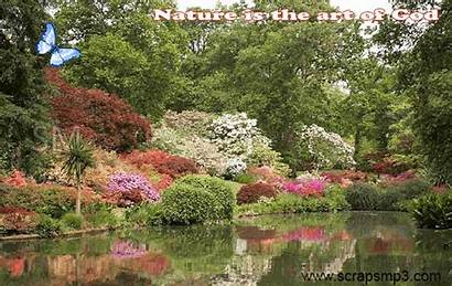Nature Gifs Animated Spring Giphy God Gardens