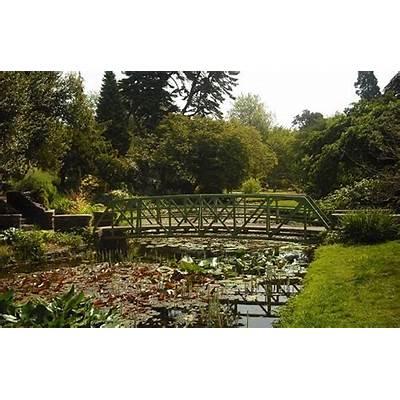 Explore Dublin's Beautiful Botanic Gardens with your