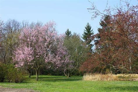 Botanischer Volkspark Pankow Blankenfelder Chaussee 5 by Botanischer Volkspark Blankenfelde Pankow 4 Bewertungen