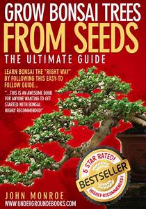 Grow Bonsai Trees From Seeds  The Ultimate Guide By John